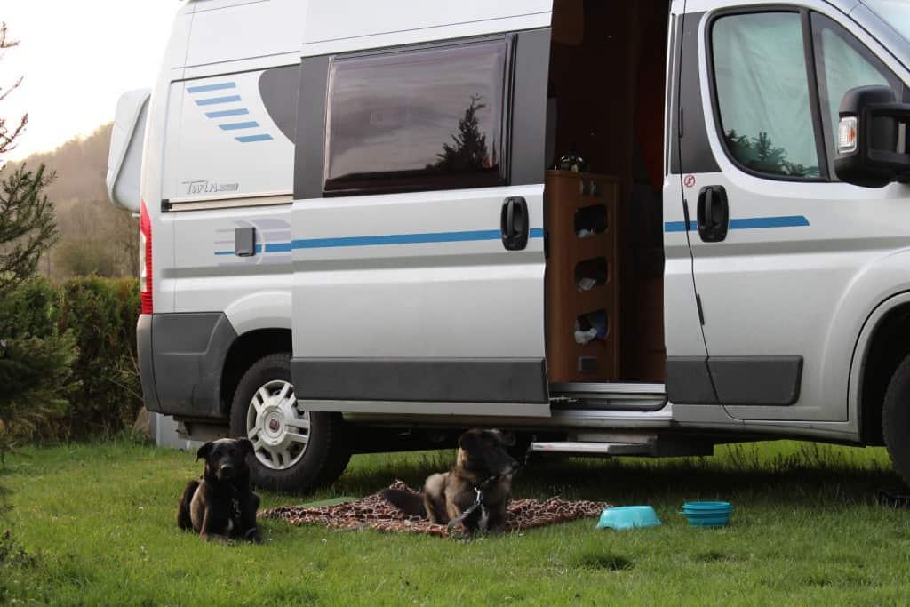 Hunde vor dem Wohnmobil